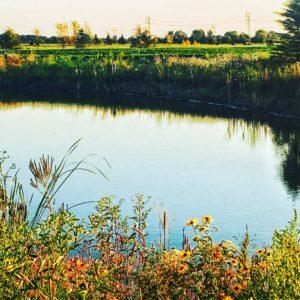 Small Parks - Flat Fork Creek Park Lake